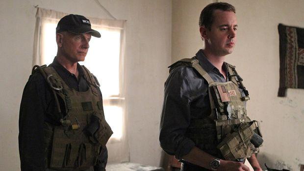 Bei den Untersuchungen in einem neuen Mordfall führt Gibbs (Mark Harmon, l.)...