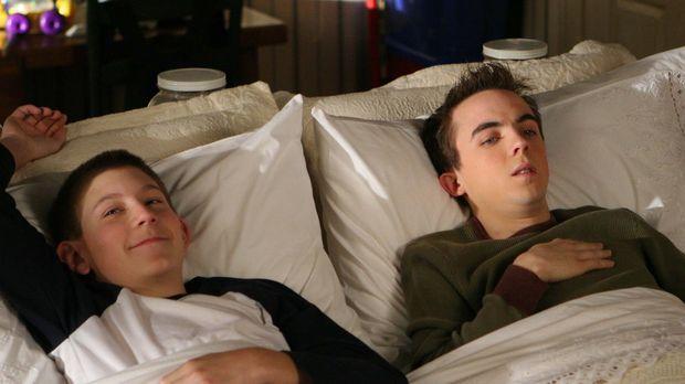 Schlafen ist seit kurzem die neueste Lieblingsfreizeitbeschäftigung von Malco...