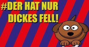 FetterHundFacebook_DickesFell
