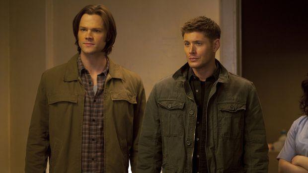Wieder stehen die Brüder Sam (Jared Padalecki, l.) und Dean (Jensen Ackles, r...