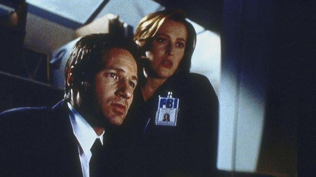 Mulder (David Duchovny, l.) und Scully (Gillian Anderson, r.) finden bei ihre...