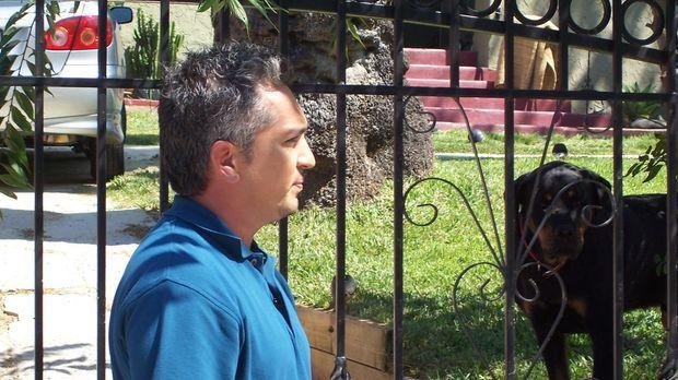 Ein neuer Fall wartet auf den Hundeflüsterer Cesar Millan ... © Rive Gauche I...