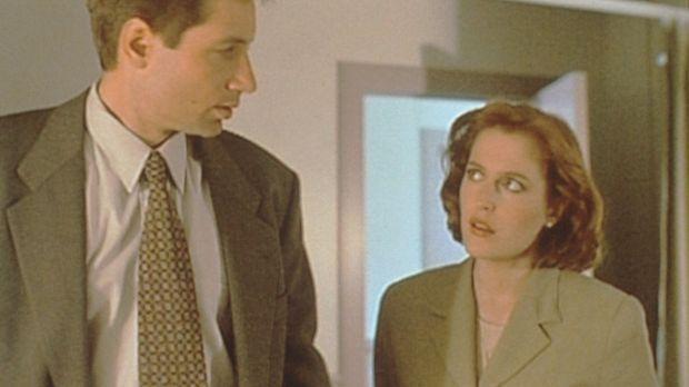 Mulder (David Duchovny, l.) und Scully (Gillian Anderson, r.) ermitteln im To...