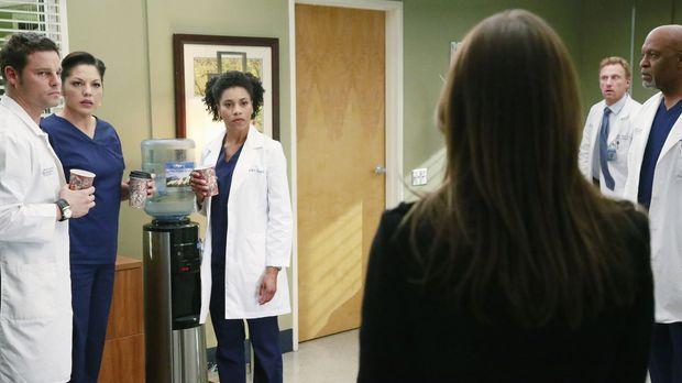 Ein schwerer Schritt: Meredith (Ellen Pompeo, 3.v.r.), die noch immer unter S...
