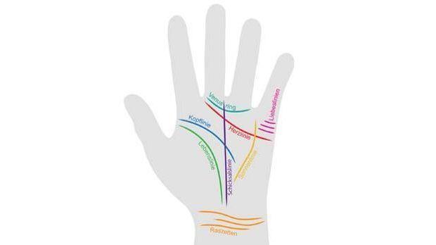 Handlinien