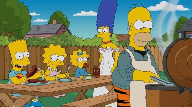 Eigentlich sollte Homer eine neue Waschmaschine kaufen - doch er kommt mit ei...