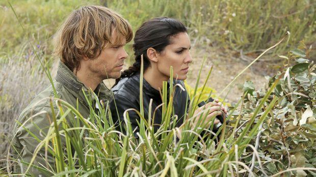Ein neuer Fall wartet auf Deeks (Eric Christian Olsen, l.) und Kensi (Daniela...