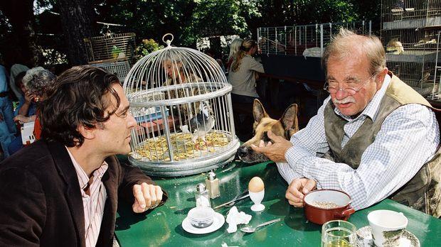 Im Zuge der Ermittlungen im Taubenzüchtermilieu erfährt Marc (Alexander Pschi...