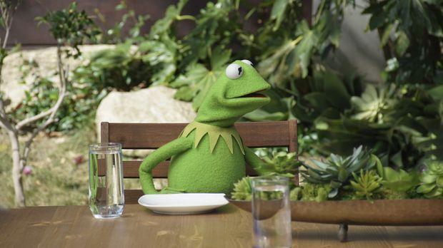Auf Anraten von Miss Piggy und Denise gönnt sich Kermit eine Auszeit in einer...