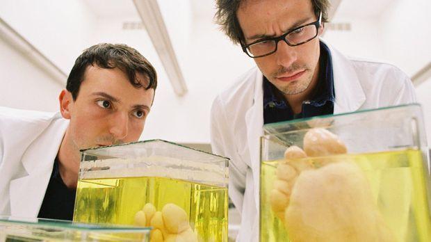 In der Anatomie machen zwei Studenten eine ebenso irritierende wie grausame E...