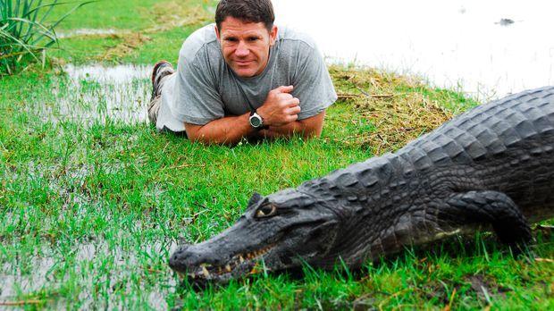 In Argentinien macht Steve Backshall die Bekanntschaft mit einem Krokodilkaim...