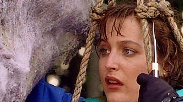 Scully (Gillian Anderson) ist entsetzt, als sie in einem insektenähnlichn Kok...
