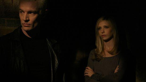Im finalen Kampf gegen das Ur-Böse: Spike (James Marsters, l.) und Buffy (Sar...
