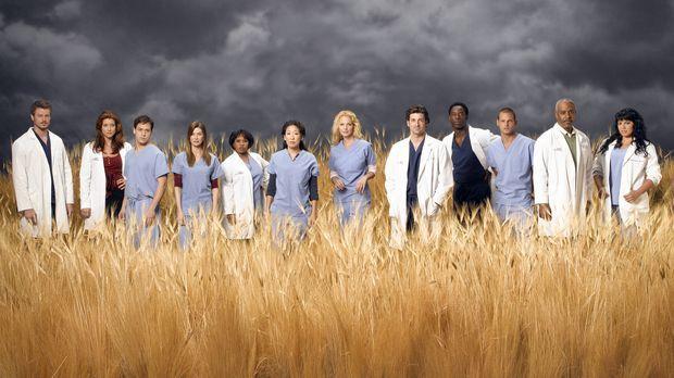 (3. Staffel) - Die Belegschaft des Seattle Grace Hospitals: (v.l.n.r.) Dr. Ma...