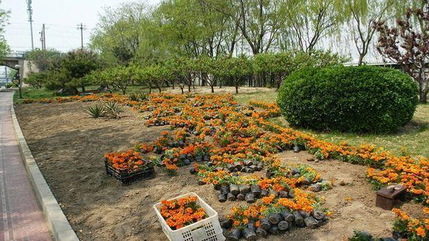 Gartenarbeit Februar Pixabay