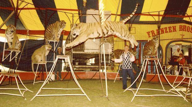 Wayne Franzen (Mitte) kündigte seinen Job als Lehrer, um im Zirkus zu arbeite...