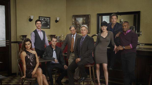 (8. Staffel) - Untersuchen Verbrechen, die auf irgendeine Weise mit der US-Na...