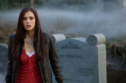 vampire diaries liebes tagebuch