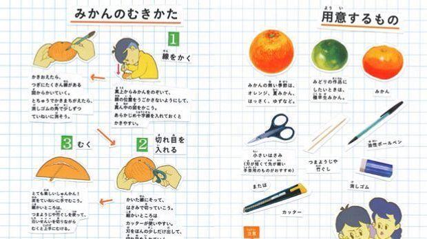 OrangenOrigami Bild