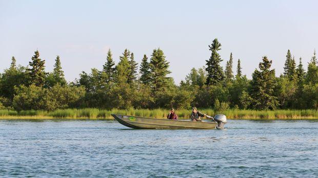 Es gibt viel zu tun: Ob Fisch, Beeren oder Holz, die Bewohner Alaskas müssen...