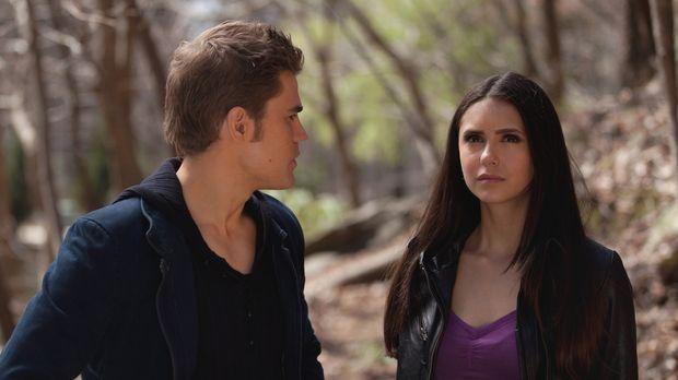 Wird es Elena (Nina Dobrev, r.) übers Herz bringen, Stefan (Paul Wesley, r.)...