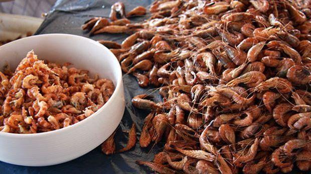 rosin-krabbensuppe