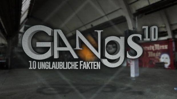 10 Fakten - 10 Fakten - 10 Unglaubliche Fakten über Gangs