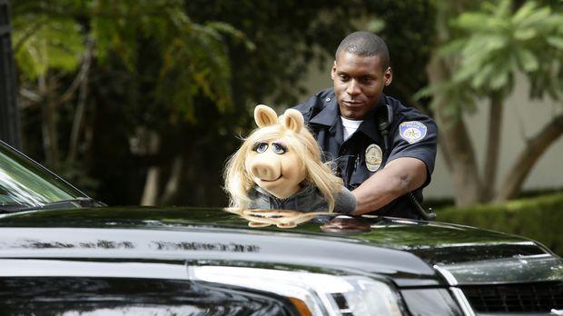 The Muppets - The Muppets - Staffel 1 Episode 3: Der Bär Ist Los