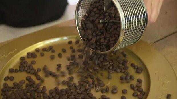 Abenteuer Leben - Täglich - Dienstag: Den Eigenen Kaffee Rösten