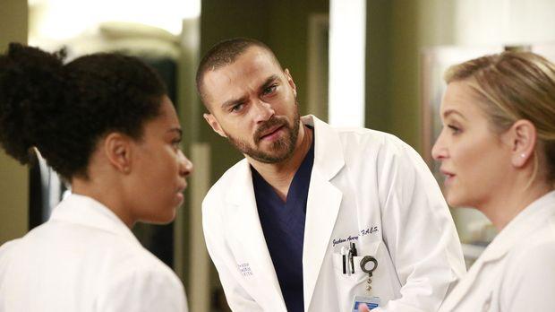 Grey's Anatomy - Grey's Anatomy - Staffel 13 Episode 12: Einmischen Unerwünscht!